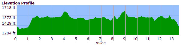 Race Elevation Profile